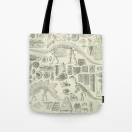 Fossil Chart Tote Bag