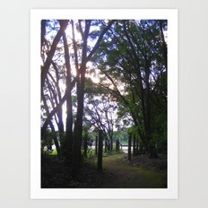 Wondrously Winding and Wistful of What? Art Print