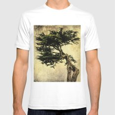 Cypress Tree White MEDIUM Mens Fitted Tee
