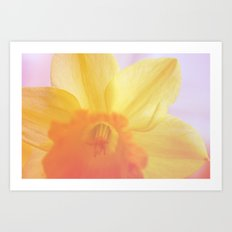 The dream of the yellow flower Art Print