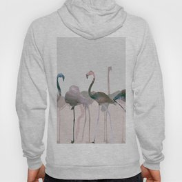 New Flamingos Hoody