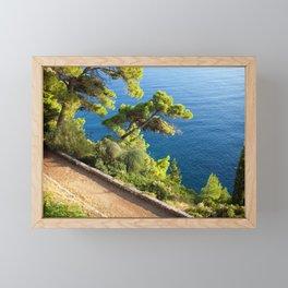 Coastal Path at Adriatic Sea in Dubrovnik Framed Mini Art Print