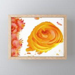 Sunlit Rose Framed Mini Art Print