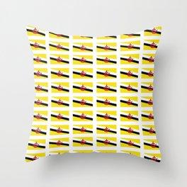 flag of brunei-jawi,borneo,bandar,malay,bruneian. Throw Pillow