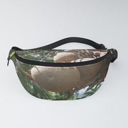 Cannonball Fruit Fanny Pack