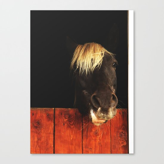 Hello? Can I help you? Canvas Print