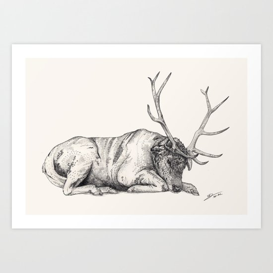 Stag // Graphite Art Print
