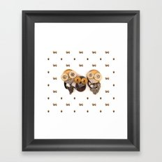 Rad's Owlets Framed Art Print