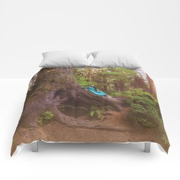 Woodland Home Comforters