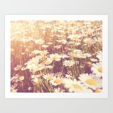 We need each other. Field of daisies photograph. Art Print