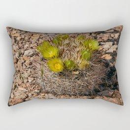 Desert Cacti in Bloom - 5 Rectangular Pillow