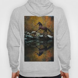 Reflections of Fall Hoody