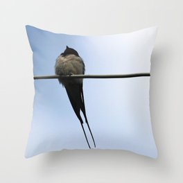 The noble barn swallow Throw Pillow