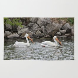 American White Pelican Rug