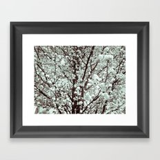 Winter Petals Framed Art Print