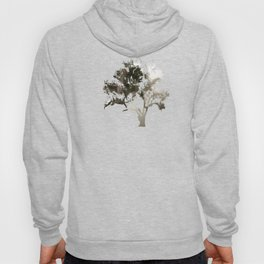 She follows me into the woods Hoody