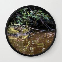 Eight Mallard ducklings Wall Clock