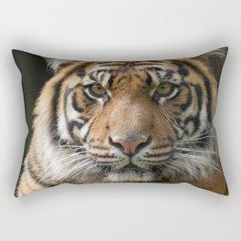 Look into my eyes by Teresa Thompson Rectangular Pillow