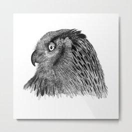 Owl Nr.2 Metal Print