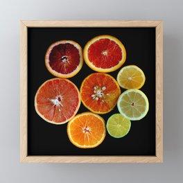 Citrus Rainbow Framed Mini Art Print