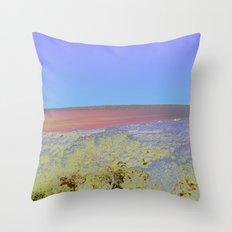 Chromascape 5: Formentera Throw Pillow