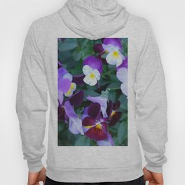 Beloved violas Hoody