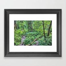 Winding Down the Hills Framed Art Print