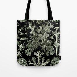 Naturalist Lichen Tote Bag