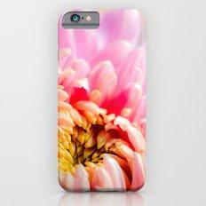 Pink Chrysanthemum Flower Slim Case iPhone 6s