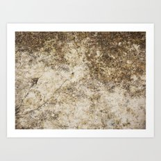 Old and Cracked Art Print