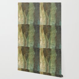 Eucalyptus Tree Bark 6 Wallpaper