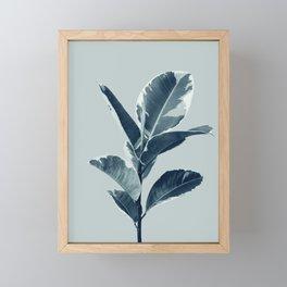 Ficus Elastica Finesse #1 #tropical #foliage #decor #art #society6 Framed Mini Art Print