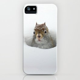 Pop-up Squirrel in the Snow iPhone Case