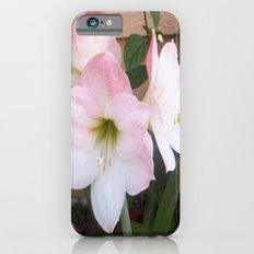 My Aunt's Flowers 1  iPhone 6s Slim Case