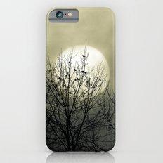 Winter Into Spring iPhone 6s Slim Case
