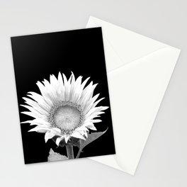 White Sunflower Black Background Stationery Cards