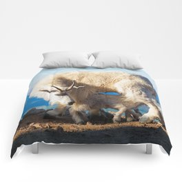 Mountain Goats Nanny And Kid Comforters
