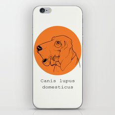 Canis iPhone & iPod Skin