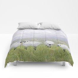 sheep and chicory Comforters