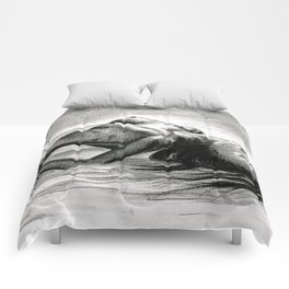 Passion in Black and White Comforters