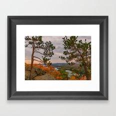 Eagle cliff pines Framed Art Print