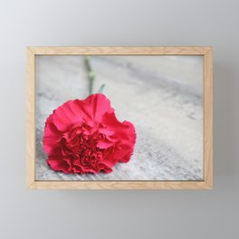 1 Pink Carnation Framed Mini Art Print