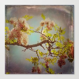 The arms of Spring Canvas Print
