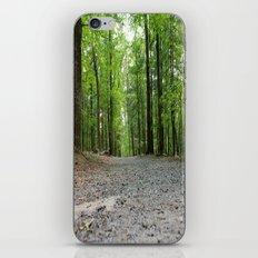 The Road Less Traveled iPhone & iPod Skin
