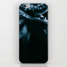 The Seafarer's Dream iPhone & iPod Skin