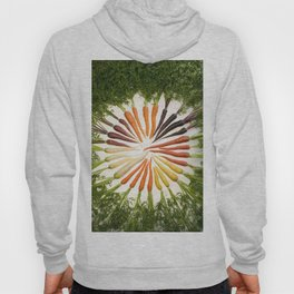 Carrot Color Wheel Hoody