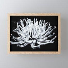 Floating Framed Mini Art Print