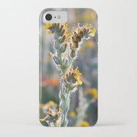zelda iPhone & iPod Cases featuring Zelda by Miss York Photography