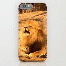 Yawn in Bronx Zoo iPhone 6s Slim Case