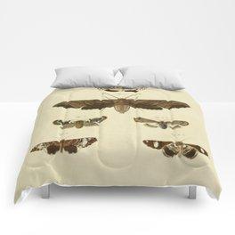 Vintage Moths Comforters